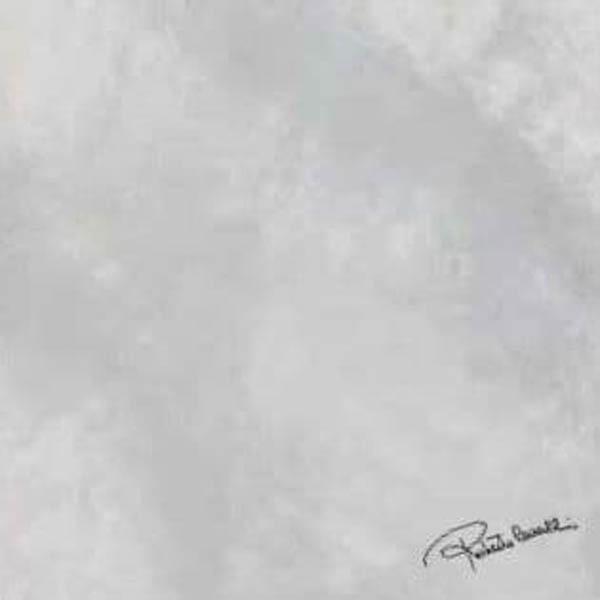 Керамогранит Roberto Cavalli Bright Pearl SNOW FIRMA RT 80