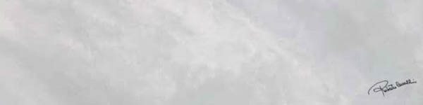 Керамогранит Roberto Cavalli Bright Pearl SNOW FIRMA RT 20x80
