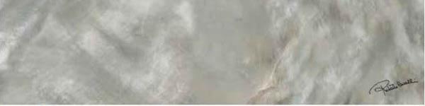 Керамогранит Roberto Cavalli Bright Pearl SILVER FIRMA RT 0531235 20x80