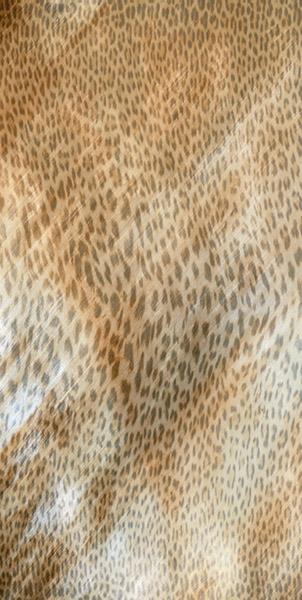 Керамогранит Roberto Cavalli Giaguaro Mask MULTICOLOR Lapp Rett 530348 60x120