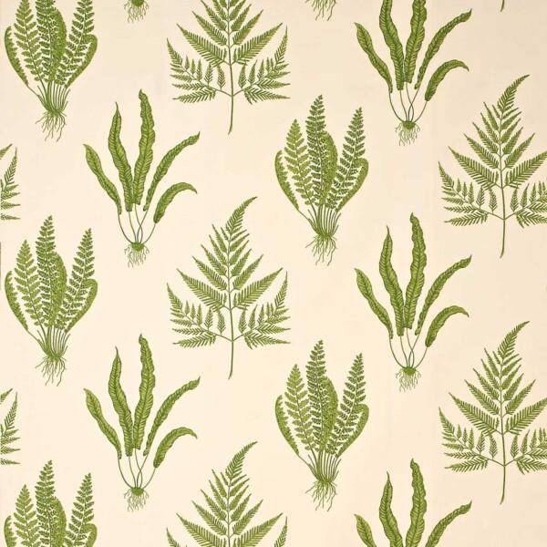 Ткань Sanderson Woodland Ferns | DAPGWO202